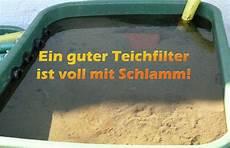 Teichfilter Eigenbau Technik - teichfilter reinigen und pflegen mit anleitung teichfilter
