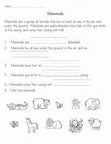 science worksheet elementary 12192 mammals science for science activities for grade science