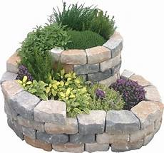 herb spiral herbal snail concrete plant with