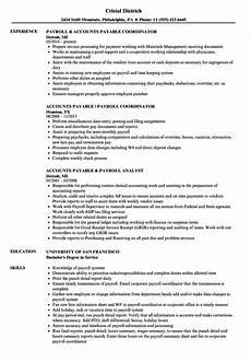 payroll accounts payable resume sles velvet