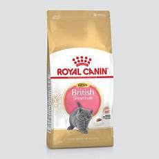 อาหารแมว royal canin shorthair kitten น ำหน ก