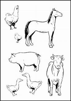 coloring pages animals 17003 farm animals coloring pages getcoloringpages