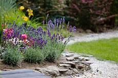 Blumen Sonniger Standort - blumenbeet f 252 r den sonnigen standort 187 diese blumen lieben