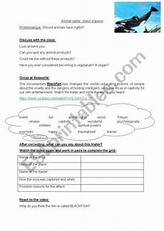 animal rights worksheets 14022 animal rights esl worksheet by fab976
