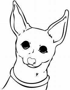 chihuahua coloring pages and print for free