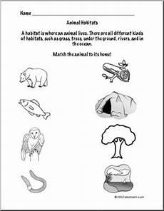 animal habitats worksheet forest animals first grade science abcteach
