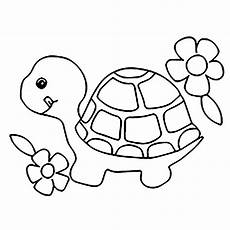 Turtle Coloring Sheet Turtles To For Free Turtles Coloring Pages