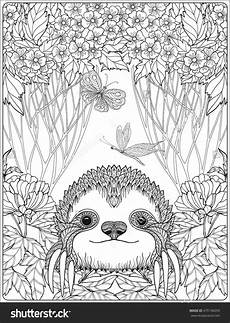 printable sloth coloring pages gallery free coloring sheets