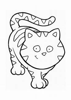 Katzengesicht Malvorlage Cat Clip Cliparts Co