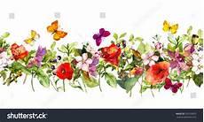 bordure en fleur floral horizontal border watercolor meadow flowers stock