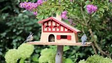 fabriquer un nichoir pour oiseaux fabriquer un nichoir 224 oiseaux la fabrique diy