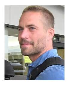 Paul Walker News Pictures And Tmz