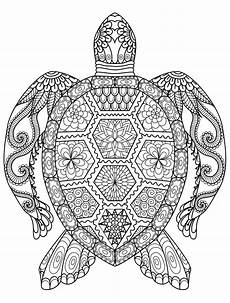 coloring pages of animals at getcolorings free