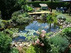 Gartenteich Bilder Und Fotos Gartenteich Bilder