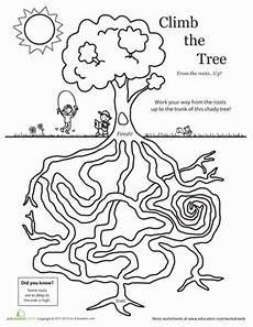amazing tree maze worksheet education com
