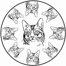 ausmalbilder mandala katze 3 ausmalbilder kostenlos