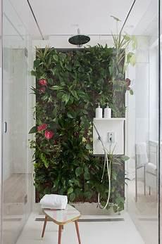 fausse plante salle de bain mur v 233 g 233 tal dans une un air de printemps souffle