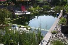 entretien d une piscine l entretien d une piscine naturelle les jardins du clos joli