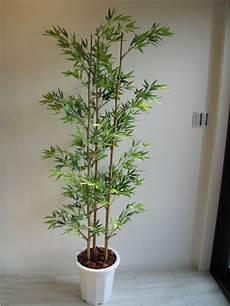 Plante Interieur Pas Cher Plante Artificielle De Faux V 233 G 233 Taux Plus Vrais Que