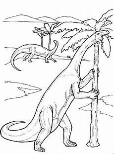 langhals dinosaurier ausmalbild malvorlage dinosaurier
