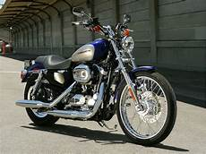 Harley Davidson Sportster Pictures by Lawyers Info Harley Davidson Xl1200c Sportster