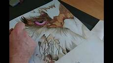 dessin speed drawing r 233 alisation t 234 te d aigle stylis 233