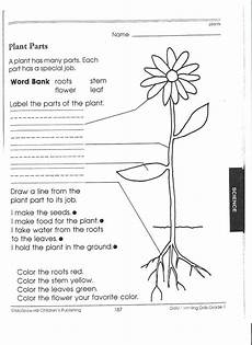 new 631 grade science worksheets on plants firstgrade worksheet