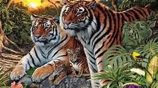 Kelihatannya Cuma 4 Tapi Ada 12 Harimau Di Gambar Ini