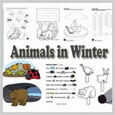 animals in winter worksheets for kindergarten 14199 squirrels preschool and kindergarten activities and lessons kidssoup