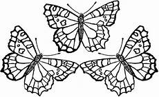monarch butterfly coloring pages and print for free