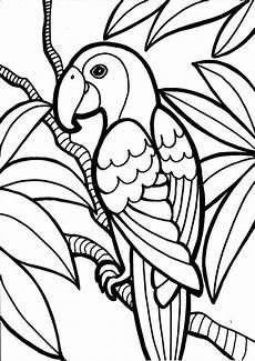 Ausmalbilder Tiere Papagei Ausmalbilder Papagei 08 Ausmalbilder Tiere