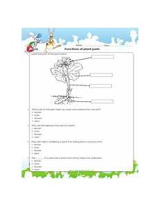 science worksheets on plants for grade 4 13724 4th grade science worksheets pdf printable