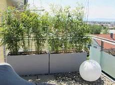 natürlicher sichtschutz balkon die 34 besten bilder balkon sichtschutz in 2019