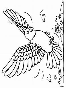 Vogel Malvorlagen Pdf Malvorlage Vogel Malvorlagen 9