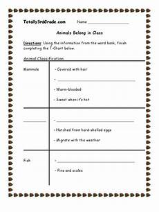 classification of animals worksheets for grade 3 14403 3rd grade animal classification worksheet