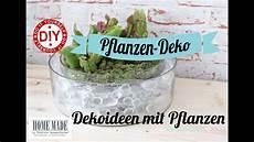 how to i deko ideen mit pflanzen i deko inspirationen