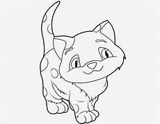 Katzen Malvorlagen Zum Drucken Katzenbilder Zum Ausdrucken Ausmalbild Club