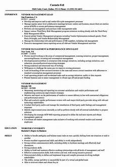 resume sumary for vendor management vendor management resume sles velvet