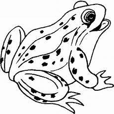 Frosch Malvorlagen Tiere Gluecklicher Frosch Mit Punkten Ausmalbild Malvorlage
