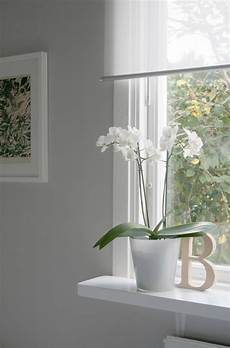 love the enje blinds from ikea for the home pinterest the office the window and the o jays