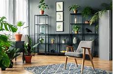 9 ways to add more houseplants to your home