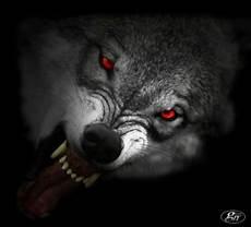 Geisternet Geister Gespenster Spukorte Schwarze Hunde