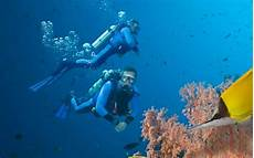 underwater heart attacks rise as scuba divers warned to lose weight