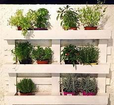 giardino verticale fai da te pallet orto verticale fai da te riciclo creativo erbe