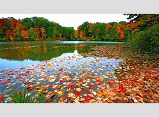 Fall Foliage Desktop Wallpapers   Wallpaper Cave