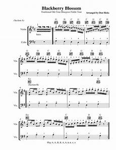download blackberry blossom duet for violin cello sheet music by traditional sheet music plus