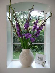 purple gladiolas in our living room the style files