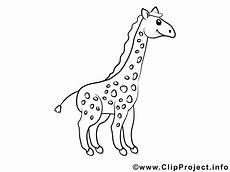Malvorlagen Giraffe Ausdrucken Ausmalbilder Giraffe Kostenlos Malvorlagen Zum