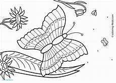 summer coloring pages pdf at getcolorings free