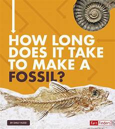 how long does it take for fossils to form how long does it take how long does it take to make a fossil hardcover walmart com